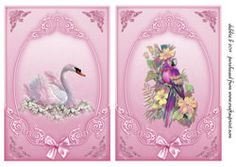 The Beauty Of The Swan Card Fronts