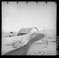 The Dust Bowl turned many farm lands that were once filled with acres and acres of crops into acres on acres of dust that started to pile on everything. It is estimated that 50 million acres were effected by the Dust Bowl. - Nicole A