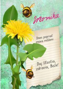 meninové priania Birthday Wishes, Happy Birthday, Plants, Blog, Motivational, Wishes For Birthday, Happy B Day, Urari La Multi Ani, Birthday Greetings