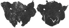 Viking felt sheep masks, found at Haithabu (Hedeby).