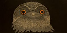 Shop - The Ivy BoxTawny Frogmouth / Carlos Beaumont Mixed Media Local Artists, Art For Sale, Ivy, Mixed Media, Art Gallery, Animals, Shopping, Art Museum, Animales