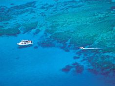 Great Barrier Reef - mission beach