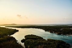 Playas de México- Chacahua  #nature #photography #landskape #landskapephotography #travel #travelphotography #natgeo #natgeotravel #sky #river #lagune #sunset #nikon #nikontop #nikonphotography #nikon_official #instapic #nikonworld_ #nikontop_  #dailythreep #daily3p #camiloyepesph