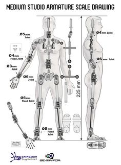 Medium Studio Armature - Ready-made Stop Motion Armature from Animation Supplies:
