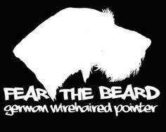 Fear the Beard GERMAN WIREHAIRED POINTER Vinyl decal