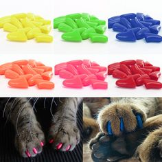 New SALE~20pcs Safty Soft Silicon Q Pet Cat Nail Claw Paws Caps+Adhesive Glue #Unbranded