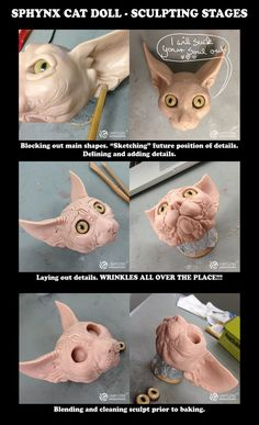 Just some progress shots The head is all baked and ready to have the base attached and then comes molding & casting. So, why does the cat has no eyelids? When I block out the main head shape I ...