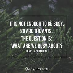 """""""It is not enough to be busy. So are the ants. The question is- What are we busy about?"""" - Henry David Thoreau"""