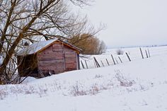 Shack in the snow. Learn more about printing your high quality photography at prolabdigital.com!