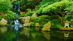 Travel Tips: 5 Free or Cheap Things to Do in Portland, Oregon — When She Roams Cheap Things To Do, Stuff To Do, 5 Things, Portland Oregon Hotels, Havasupai Arizona, Portland Japanese Garden, Garden Images, Places To See, Travel Tips
