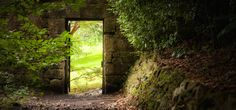 This is just one of many amazing places you can travel to for FREE with Meditainment. It's meditation that takes you places! The garden's always open ...