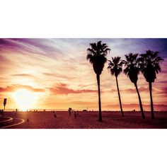 Venice Beach ❤ liked on Polyvore featuring backgrounds, pictures, beach, photos and art