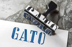 GATO NYC - Google Search