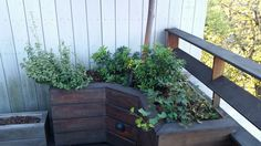 Custom Wood Planter by New York Plantings http://www.newyorkplantings.com/CustomPlanters.html custom planters NYC, IPE planters NY, planter boxes for rooftop gardens, Hanging Planters, Contact: 347 558 7051