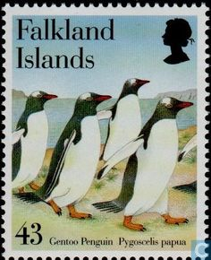 Postage Stamps - Falkland Islands - Gentoo Penguin Gentoo Penguin, Letter Boxes, British Overseas Territories, Falklands War, Rare Stamps, Mail Art, Stamp Collecting, My Stamp, Postage Stamps