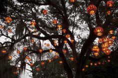 Garden lights by Jorge Pardo. In the Fairchild Botanical Garden in Coral Gables