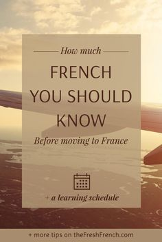 You're frantic because you're going to France this year. Get a complete overview of the French you should know to feel relaxed when moving to France, including a learning schedule you can customize!