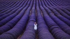 She Photo in Album Provence - Photographer: Paweł Uchorczak