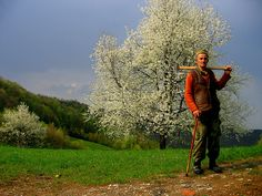 Uros Petrovic - The Last Day of Old Cherry by Uros Petrovic, via Flickr