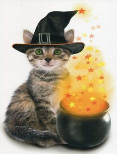 Halloween Card with a tabby cat with green eyes and a smile wearing a witch's hat sitting next to an orange glowing cauldron of stars. Theme Halloween, Halloween Cat, Happy Halloween, Halloween 2015, Kittens Cutest, Cats And Kittens, Cute Cats, Tabby Cats, Crazy Cat Lady