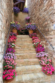 Steps in Spello, Perugia, Italy