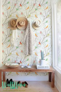 Colourful Birds Pattern Wallpaper, Removable Wallpaper, Birds Wall Sticker, Birds Wall Decal, 176