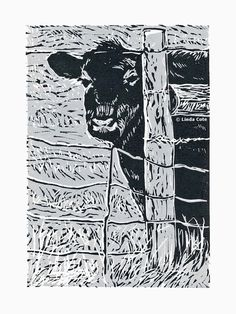 Sarah 2 Color Linocut Relief Print Cow Hand Pulled Fine Art Limited Edition Printmaking Original