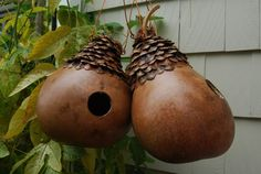 Natural Birdhouse Gourd with Pinecone Petal Roof-Made to Order. $35.00, via Etsy.