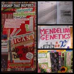 Interactive Notebooks - Saints AP Biology
