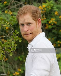 Prince Harry plants a tree during the unveiling of the dedication to The Queen's Commonwealth Canopy and Arbour Day Fair at Queen Victoria Park Botanical Gardens on the third day of an official visit on November 22, 2016 in St John's, Antigua and Barbuda. Prince Harry's visit to The Caribbean marks the 35th Anniversary of Independence in Antigua and Barbuda and the 50th Anniversary of Independence in Barbados and Guyana.  (Photo by Chris Jackson/Getty Images)