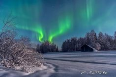 *🇫🇮 Aurora on a winter night (Finland) by Asko Kuittinen ❄️ I Love Winter, Winter Wonder, Winter Night, Nature View, Winter Beauty, To Infinity And Beyond, Landscape Pictures, Nature Images, Life Is Beautiful
