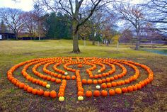 A pumpkin labyrinth! Created in New Harmony, Indiana.