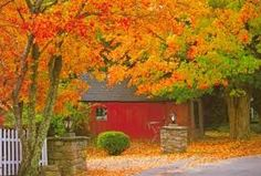 new england fall - Google Search
