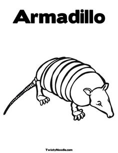 armadillo coloring page that you can customize and print for kids