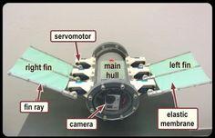 Robot submarino impulsado por Arduino #arduino #tecnologia #innovacion #robots #robotica