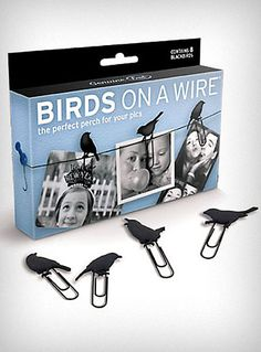 birds on a wire, paperclips. PUT A BIRD ON IT. DiY: I'm gonna try using black card stock and cut bird shapes to glue on paper clip.