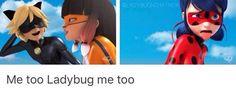 Ciúmes? Ladybug: Não! ... Haaa ...Ho deicha para lá.