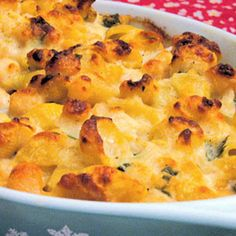 These Baked Scallops and Shells bring an elevated twist to tuna #casserole. #recipe #dinner