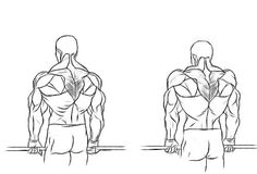 Trapezius workout