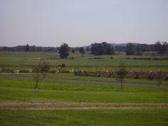 Battlefield looking towards Little Round Top from Trostler Farm.