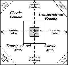 Gah, finally found it! Though this connects the two updated sides with transgender and transsexual. Not necessarily sure I accept that part, but still. Gender Equity, Male Male, Central Texas, Classroom Projects, Heart And Mind, Transgender, Chemistry, Psychology, Identity
