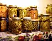 Canning Preserving Pickling Vegetables Drying Food 35 Books Curing Processing CD