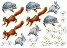 тематичексая неделя дикие животные Educational Games, Close Image, Rooster, Animals, Arrow Keys, Animales, Learning Games, Animaux, Animal