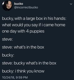 *opens box to reveal cake* Ha!<< 5 puppies suddenly come running in the room Avengers Memes, Marvel Memes, Marvel Dc Comics, Marvel Avengers, Bucky And Steve, Dc Memes, Superfamily, Marvel Funny, Stucky