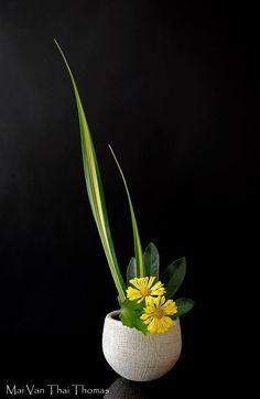Ikebana Flower Arrangement, Ikebana Arrangements, Flower Arrangements Simple, Flower Vases, Flower Art, Beautiful Roses, Yellow Flowers, Beautiful Flowers, Deco Floral