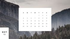 Scroll down to find the best free printable October 2020 calendars and get them right now. October Calendar Printable, Free Calendar, Free Printable Calendar, Calendar 2020, Free Printables, Halloween Date, State Holidays, National Cat Day, All Saints Day