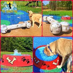Some of our newer above ground water play features for a Dog Water Park.  Will be installing these soon at a Dog Facility that is adding a splash pad to all the other fun things they have there for the dogs.