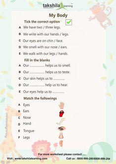 english grammar worksheets for class 1 Worksheet For Class 2, 2nd Grade Reading Worksheets, English Worksheets For Kindergarten, English Worksheets For Kids, English Lessons For Kids, Science Worksheets, Kids English, Lkg Worksheets, Nouns Worksheet