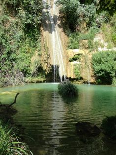 the river and the waterfalls of NEDOU