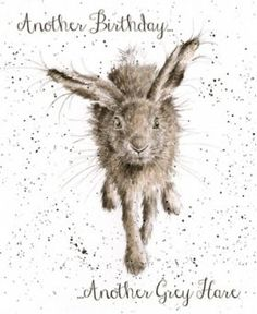 OC009 - Little Grey Hare | Wrendale Designs